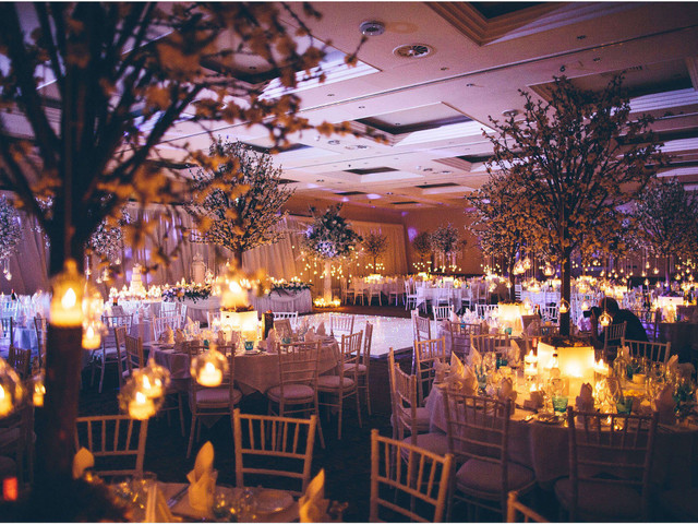 8 Drop Dead Gorgeous Wedding Tree Decor Ideas