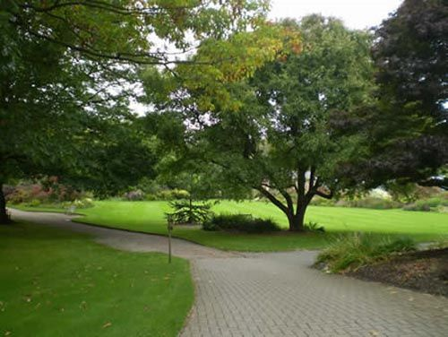 Ness Gardens views