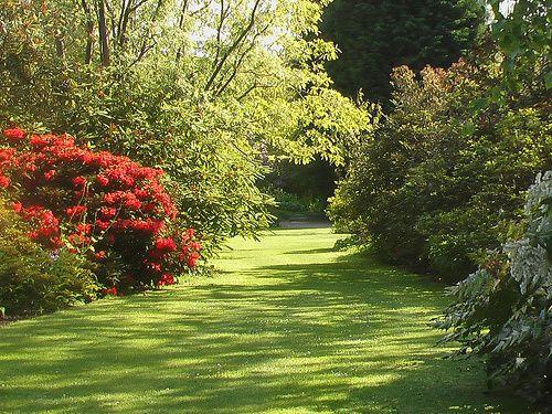 Ness Botanical grounds
