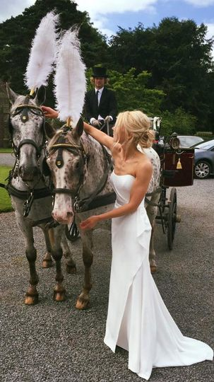 Bride and pair of horses