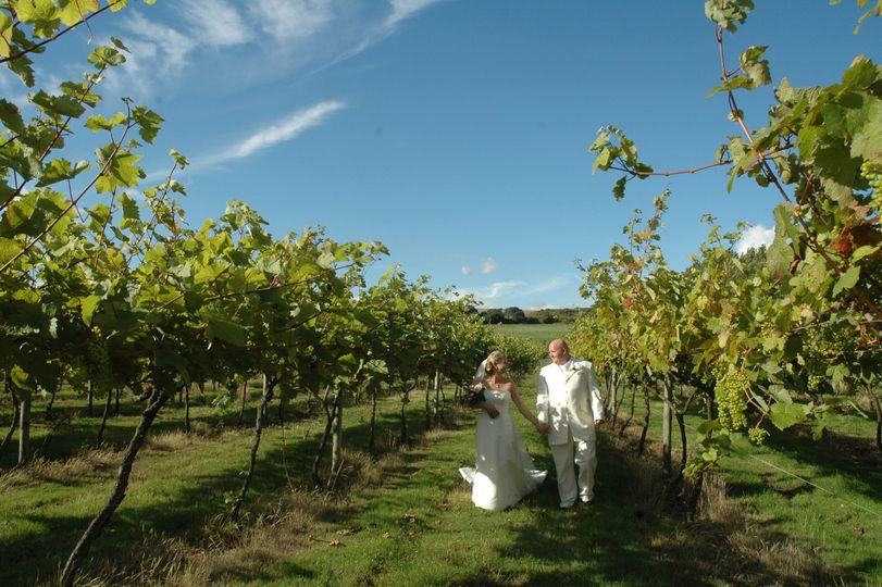 Highdown Vineyard