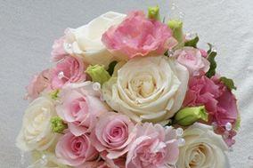 Sue's Blooms