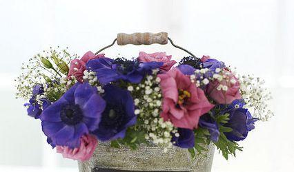 Blue Goose Wedding & Event Hire