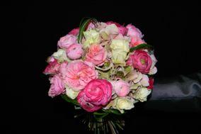 Flowers by Arkadius