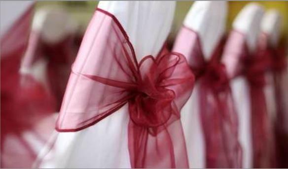 Elegant Red Sash