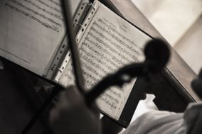 Riccardo Senesi - Violinist