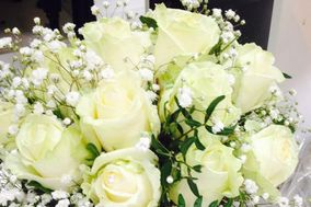 Amaris Flowers