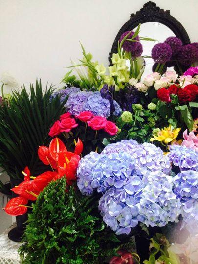 Amaris fresh flowers