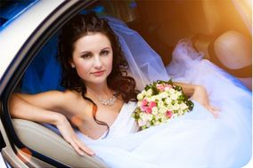 Bruce Wedding & Executive Car Hire