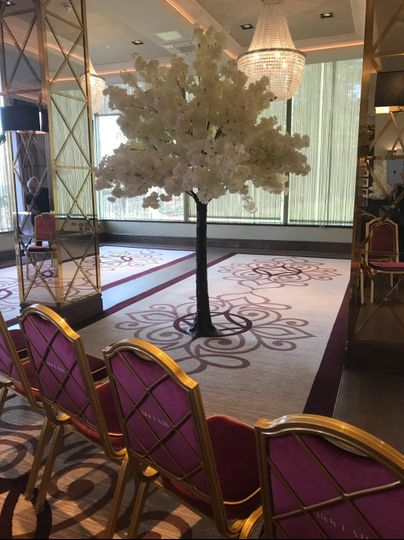 Ivory Blossom trees 9ft