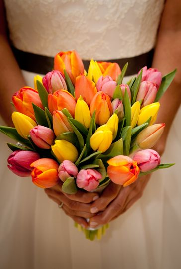 Flowers by Eve tulips