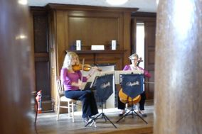 Andrelli String Duo