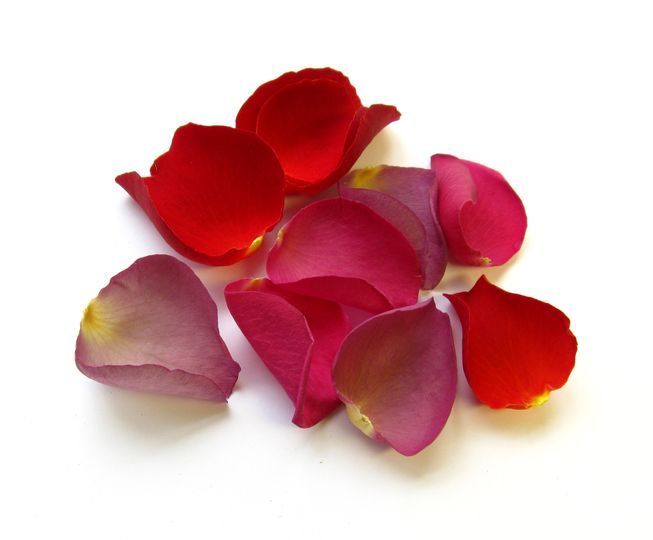 Large natural rose petals