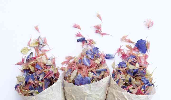Confetti cones and our own natural petal confetti