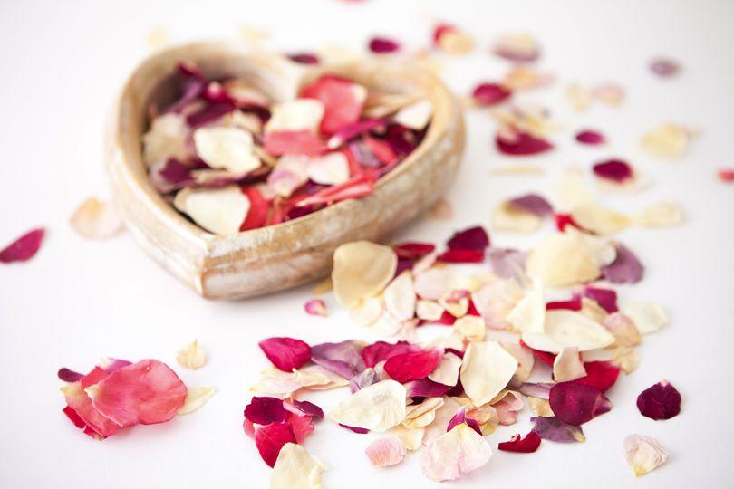 Rainbow Rose Petals