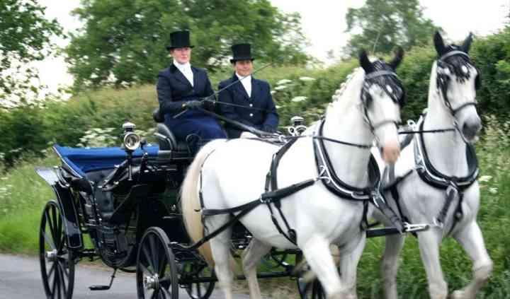 Lediard Carriage Services