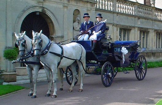 Elegant bridal carriage