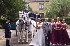 Elegant Carriages
