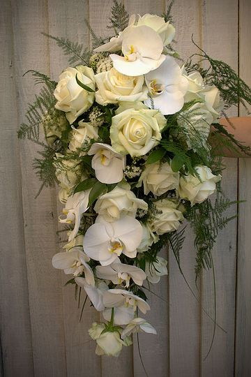 Shower Bouquet of Orchids and 'Avalanche Roses'