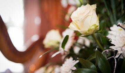 Taylored Weddings