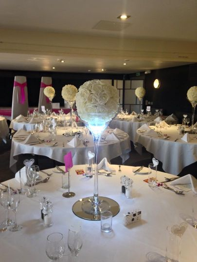 Rose ball martini with led lig
