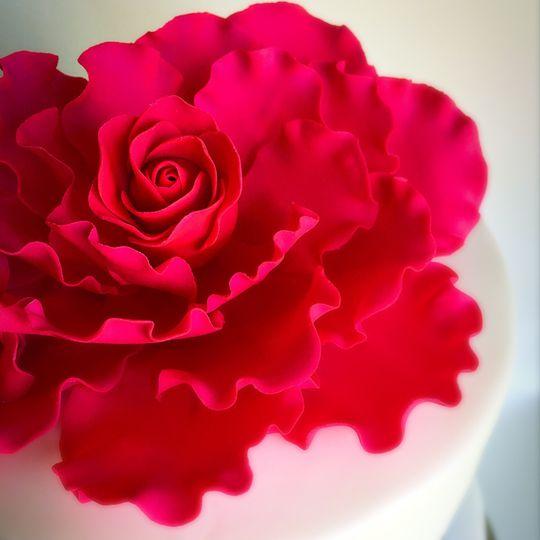 Elegant sugarpaste rose