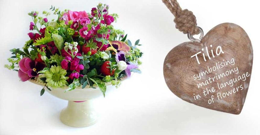 Tilia flowers
