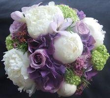 Peonies mixed with purples