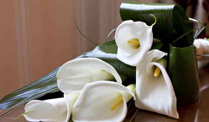 Jane Pillinger Wedding Flowers