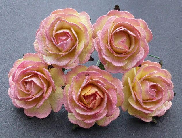 Classic sweet roses
