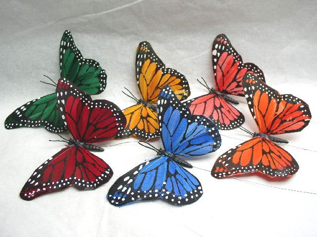 Feather butterflies in colours