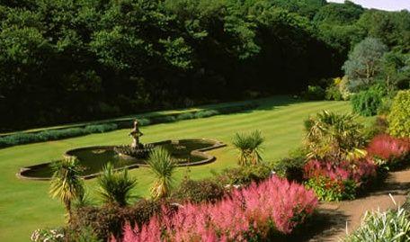 Stunning garden