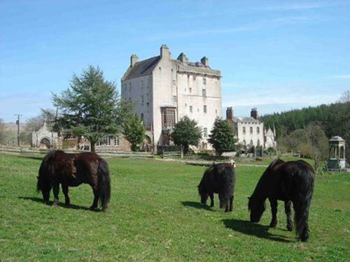 Delgatie Castle grounds