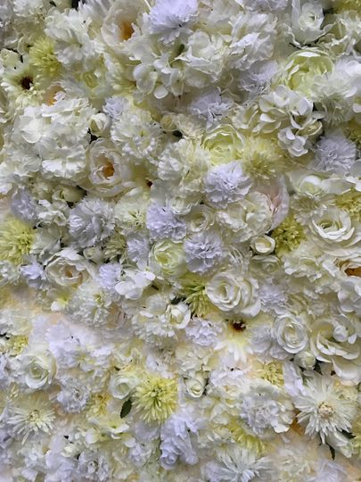 Close up of flower wall