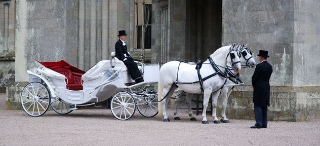 Ivory carriage
