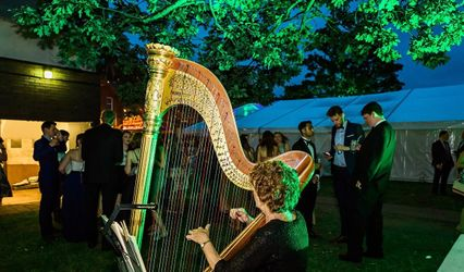 Audrey Cameron Finnemore - Harpist