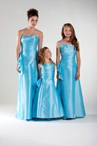 Bridesmaid Gowns from Ebony Ro