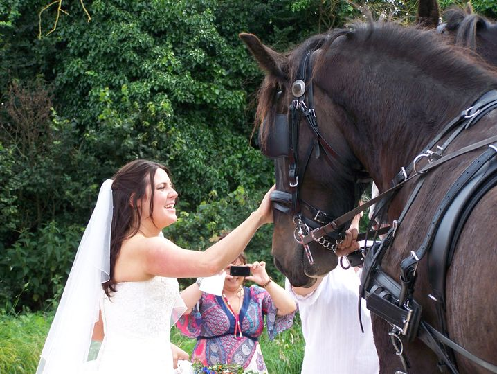 Bride meeting the Shires