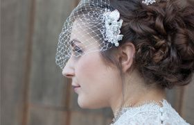 Updo with bird cage veil