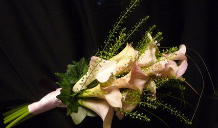 Inflorescence Florist