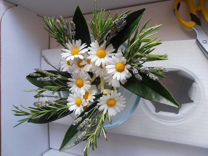 Daisy buttonholes