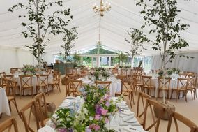 Event Tree Hire - Botanica