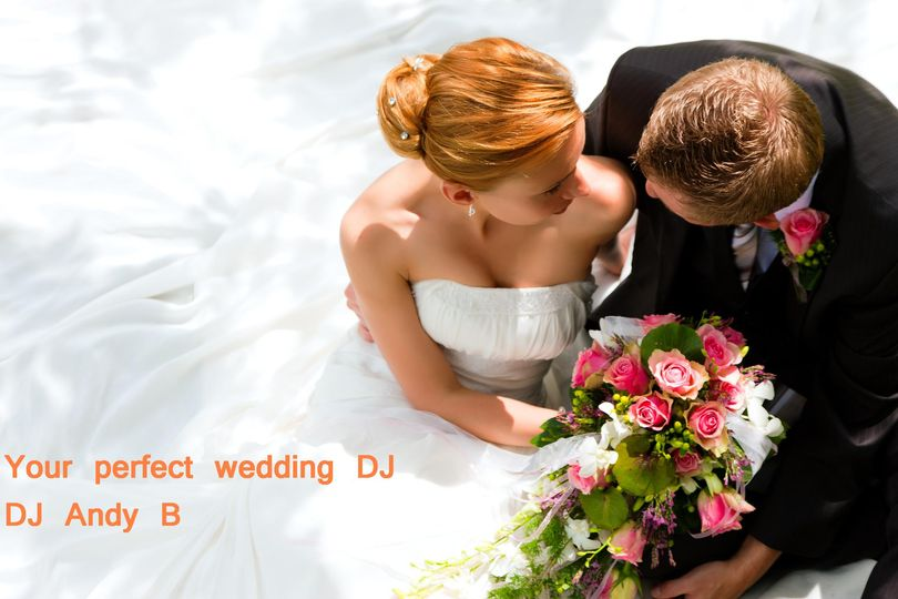 Your Perfect Wedding DJ