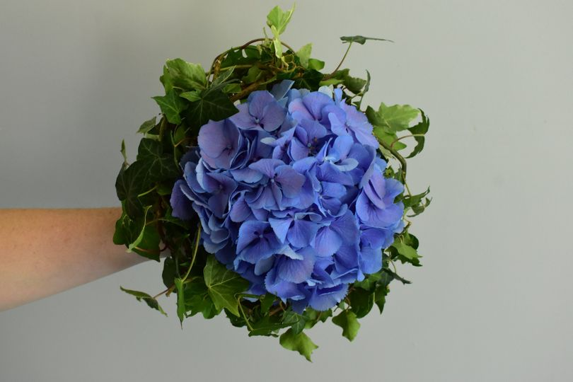 Hydrangea and Ivy bouquet