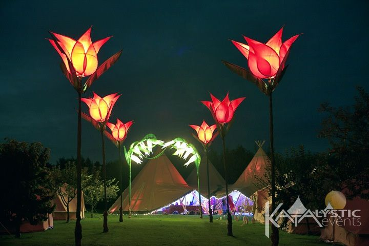 Tents with light tulips