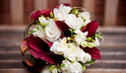 Adams Florist