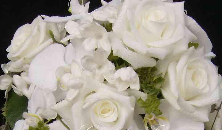 Glenholme Florists