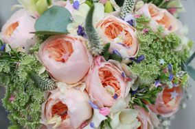 Ck Flowers