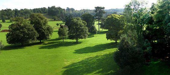 Hagley Hall garden