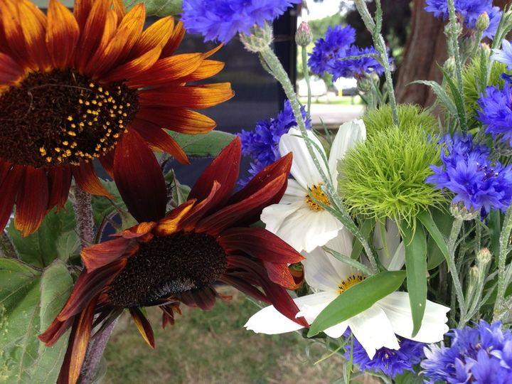 Mixed British flowers